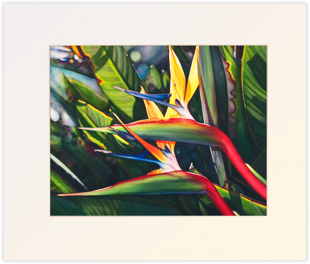 View of Hanalei, matted print by Lisa Lopuck