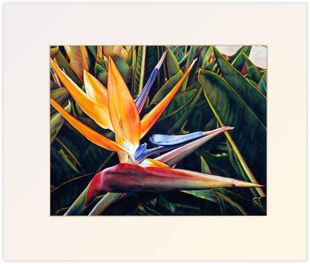 Weekend in Catalina, matted print by Lisa Lopuck