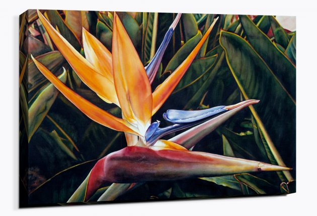 Weekend in Catalina - Canvas